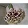 Bouquets_12